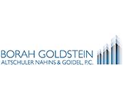 Borah Goldstein